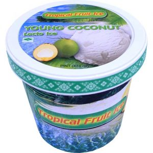 Tropical Fruit Ice Cream Macapuno (S) 473ml